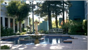 Photo of Courtyard at Corte Madera Plaza